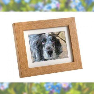 Memorial urn photo photoframe pet loss